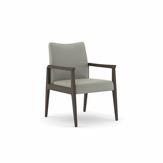 Spruce Guest Chair
